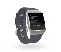 Fitbit - Ionic Smartwatch Blue Gray/Silver Gray